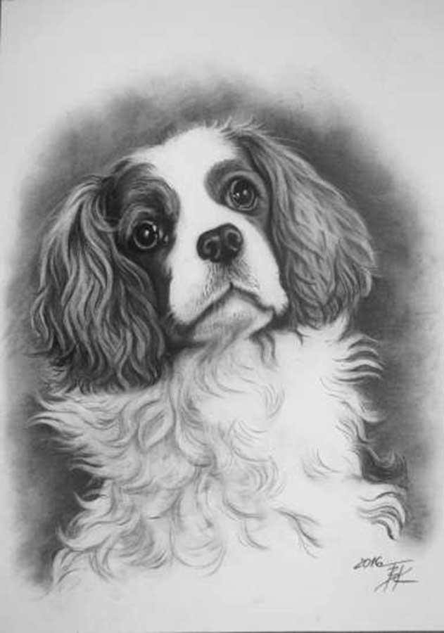 cuadros de mascotas, pinturas al carboncillo