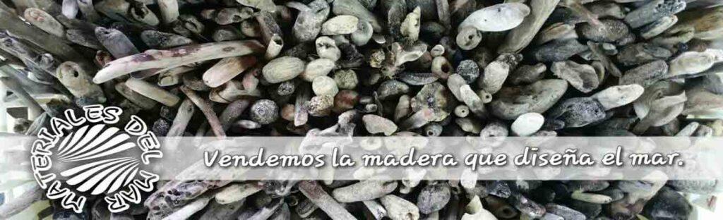 materiales del mar, conchas, palos, piedras naturales