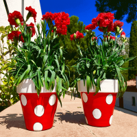 macetas decoradas, jardin, decoracion